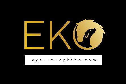 1EKO_Logo-primary