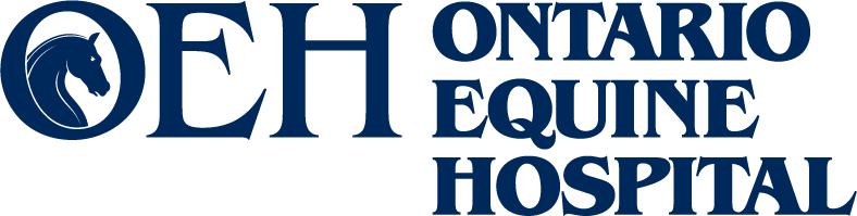 oeh-logo-wide-navy_blue